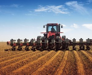 Озимый сев в Челябинской области будет просубсидирован