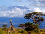 В Дании беспокоятся о застопорившемся проекте в Танзании