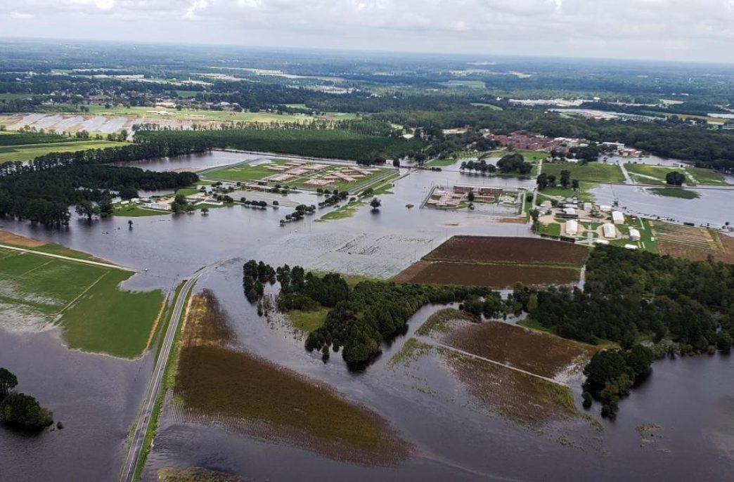 Ураган Флоренс выявил недостатки свиноферм