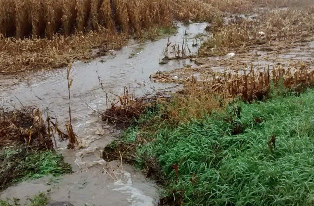 Ученые нашли предел накопления фосфора в земле