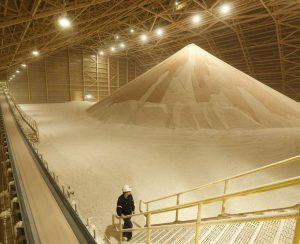 Israel Chemicals будет наращивать поставки в Китай