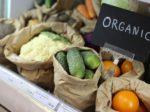Беларусь встает на путь органического земледелия