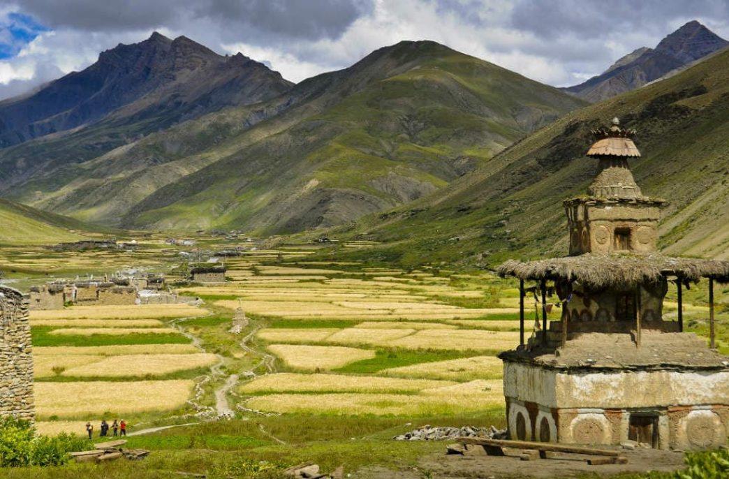 Непал соберет рекордный урожай риса