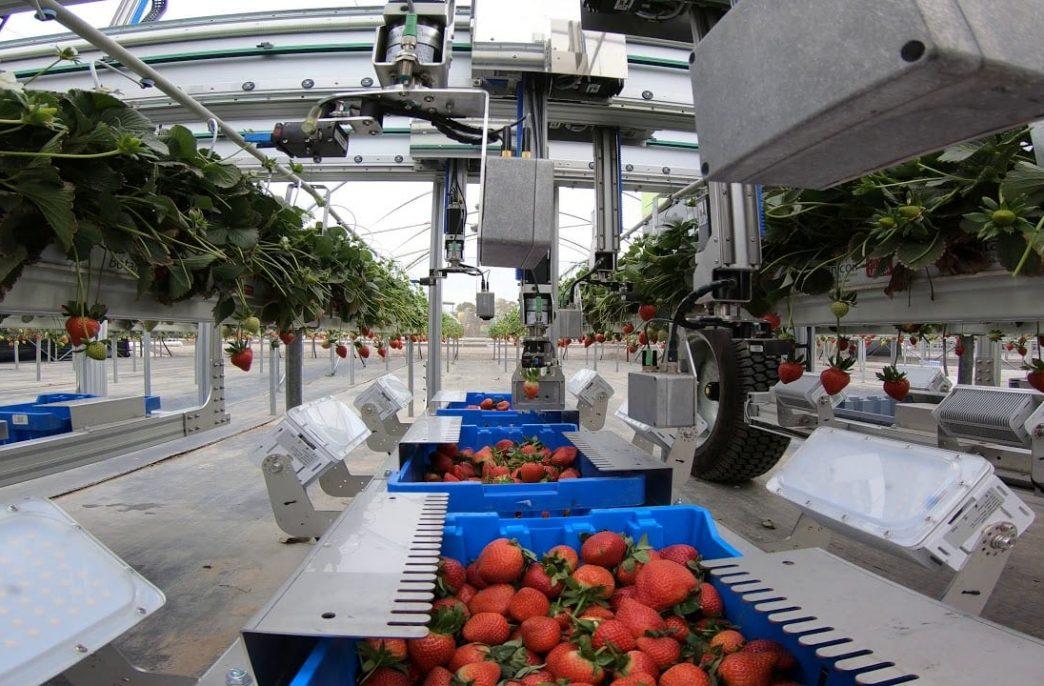 Роботы готовятся заменить фермеров