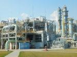 Indorama может стать акционером «Аммония»