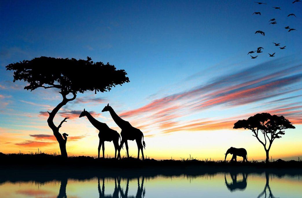 «Уралхим» расширит присутствие в Африке