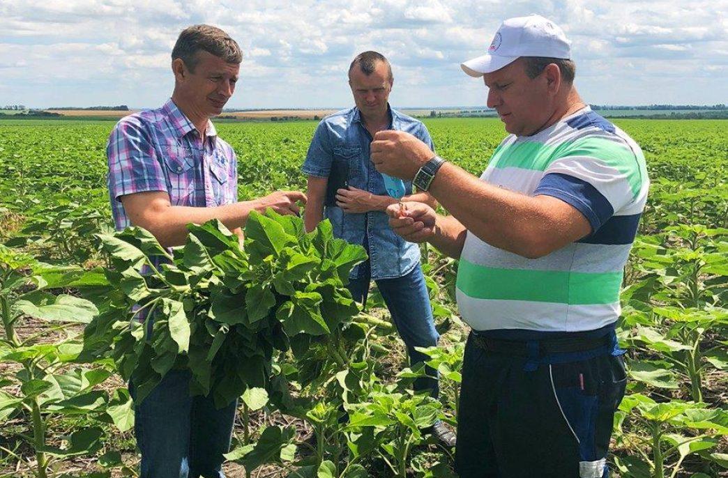 «Уралхим» расширит программу агроиспытаний