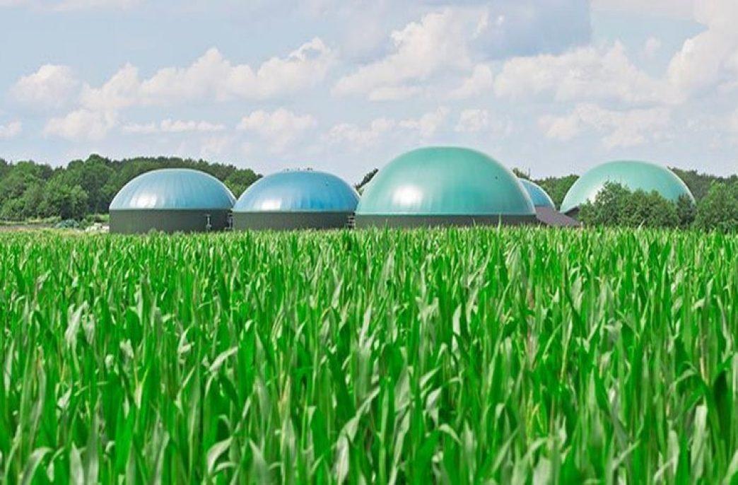 В Бразилии начал работу биогазовый завод