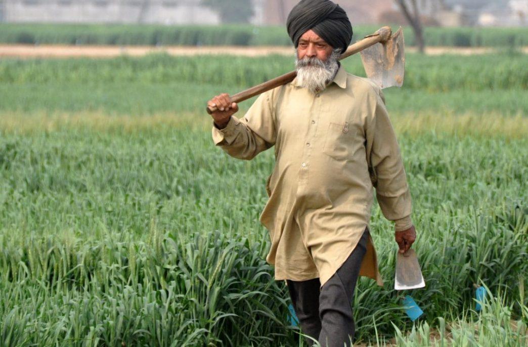 Индия запасается карбамидом