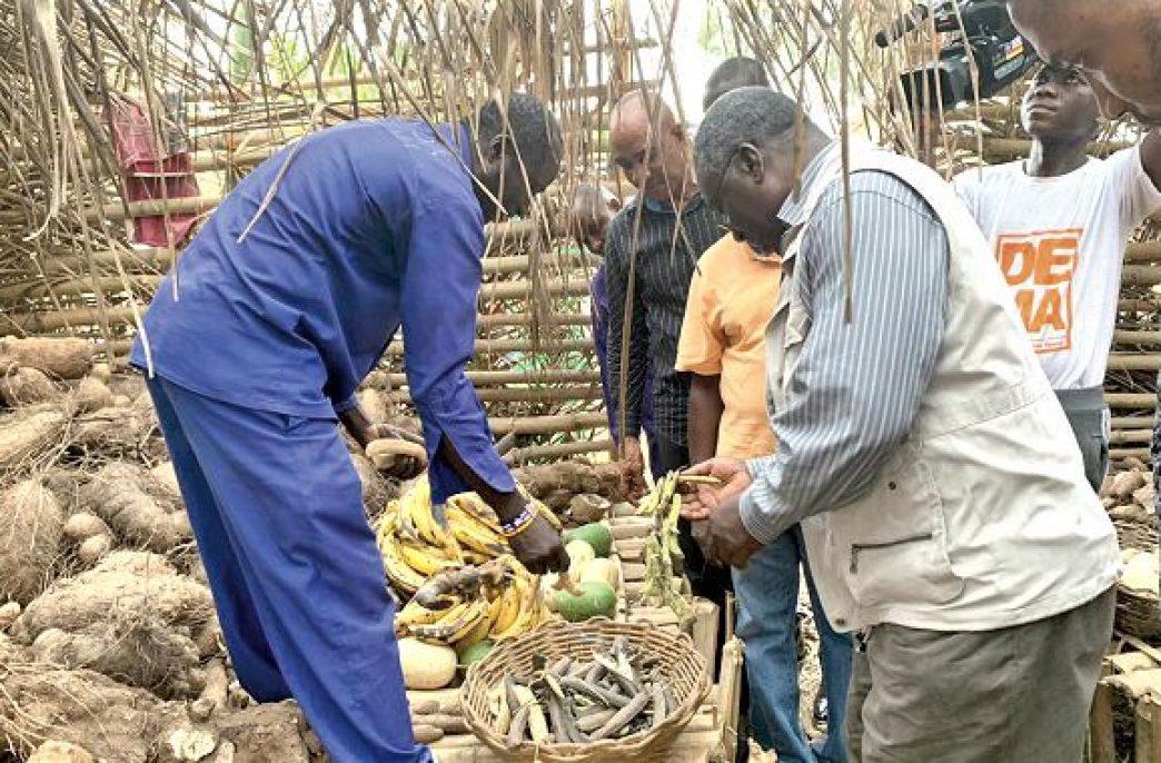 В Гане священник создал удобрения