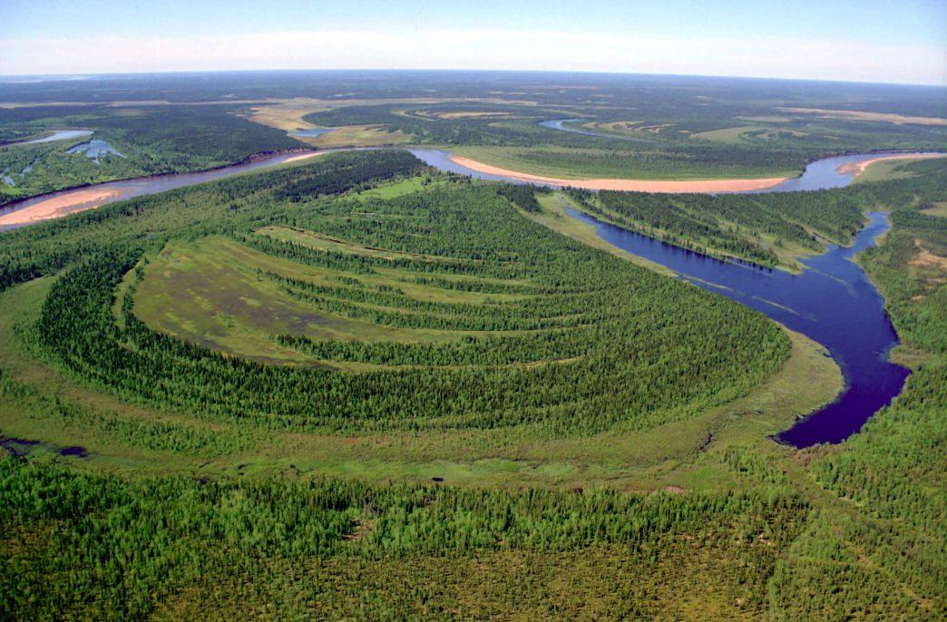 В Коми поддержат органическое сельское хозяйство