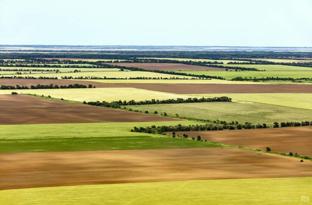 «ФосАгро-Регион» продолжит поддержку аграриев Ростовской области