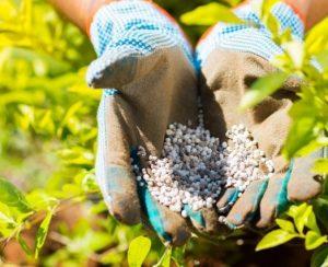 Полевой шпат поможет фермерам