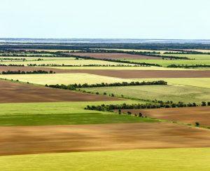 В Ростовской области завершается внесение удобрений
