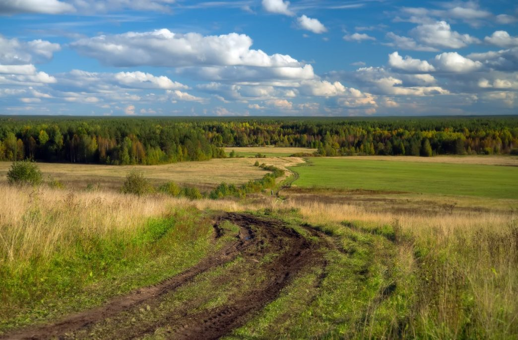 Аграриям Коми потребуется более 1 тыс. тонн агрохимикатов