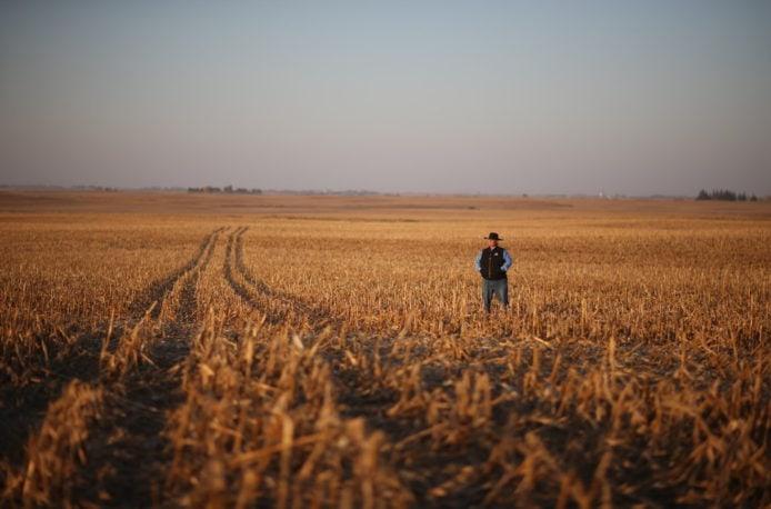 Ученые подсчитали потери азота в США