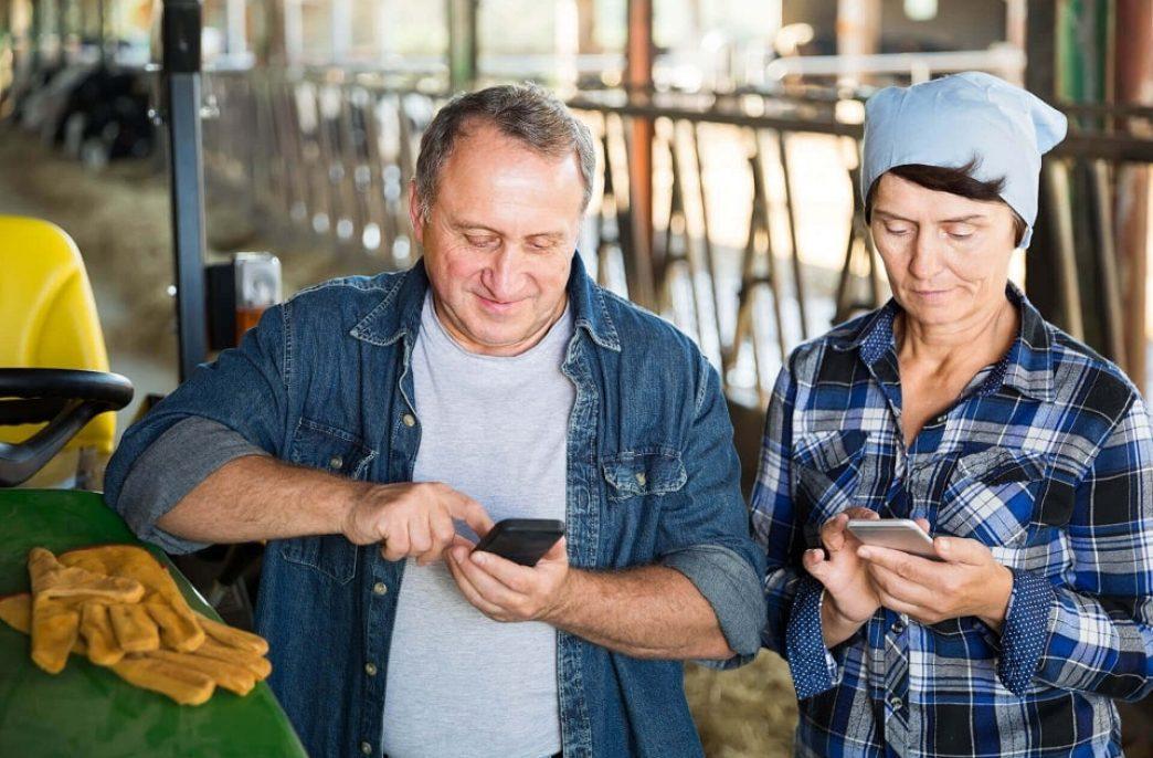 Егор Кирин: «Мы создали платформу, выгодную всем участникам агрорынка»