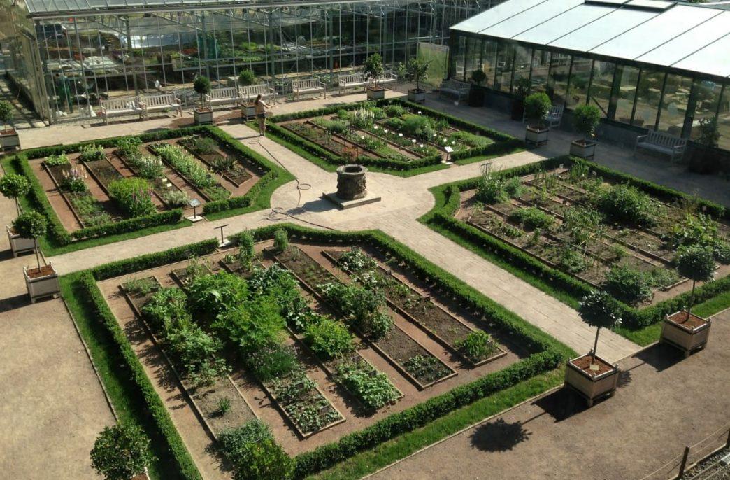 В «Аптекарском огороде» будут выпускать удобрения
