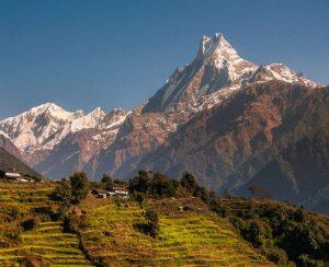 В Непале могут построить завод по выпуску удобрений