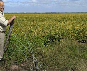 «Акрон» приступил к прямым поставкам в Аргентину