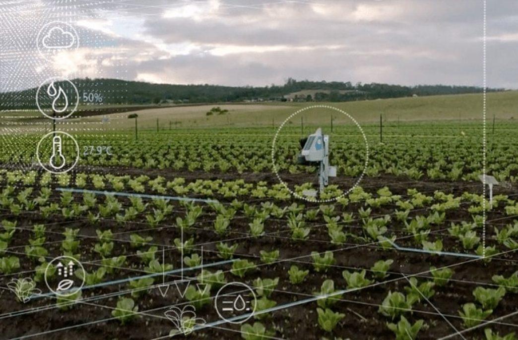 В США опробуют «умную» систему ирригации
