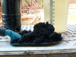 «Камчатский водоканал» сертифицировал иловый осадок