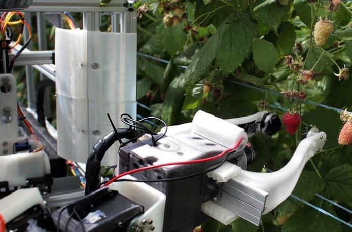 Robocrop: первый в мире робот для сбора малины