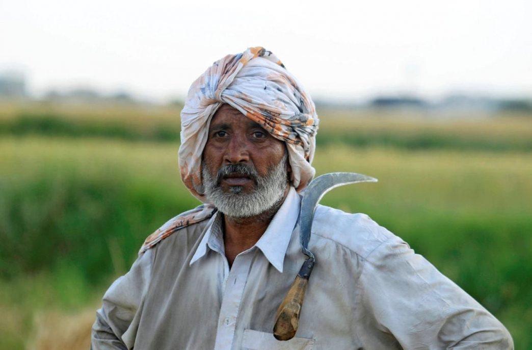 В Пакистане растут продажи карбамида и диаммонийфосфата