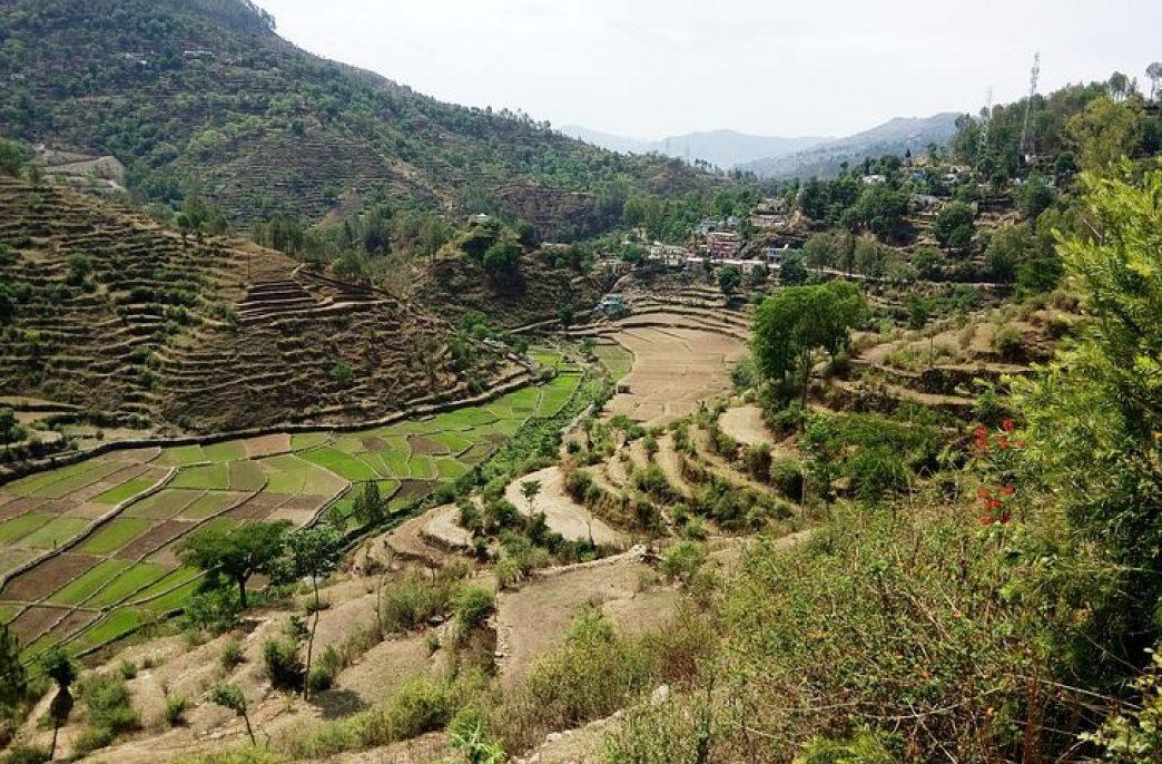 В Индии не хватает средств на субсидирование удобрений