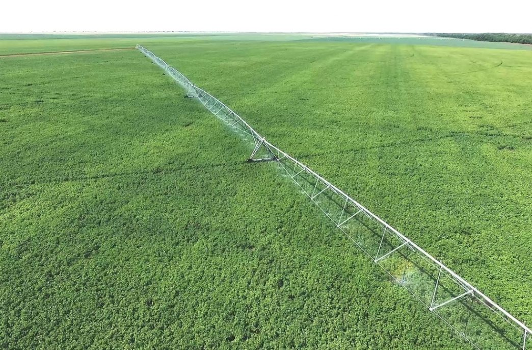 В Ставропольском крае расширят орошаемые земли