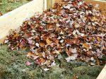 В Московской области хотят выпускать органические удобрения