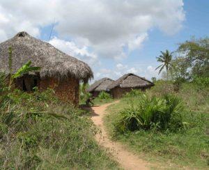 В Нигерии восстановлено 11 заводов по смешиванию удобрений