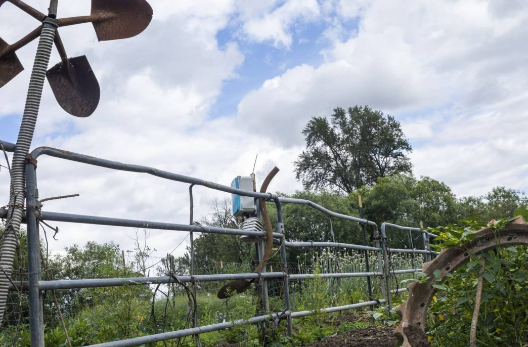 Как искусственный интеллект поможет фермерам