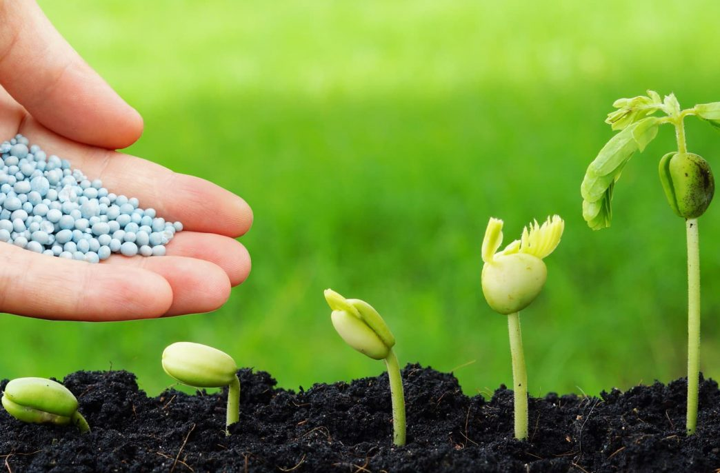 В России растет производство удобрений