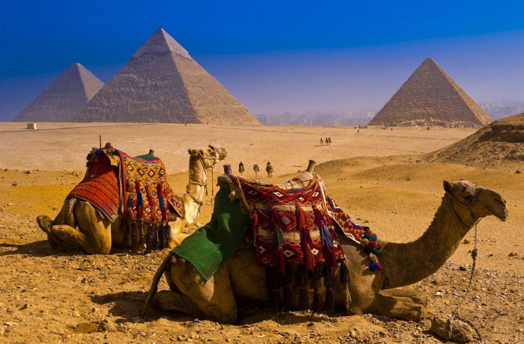 В Египте построят аммиачный завод