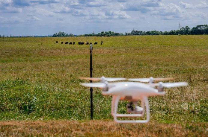 В США дронов научат следить за коровами