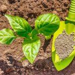 Суперфосфат — инструкция по применению удобрения