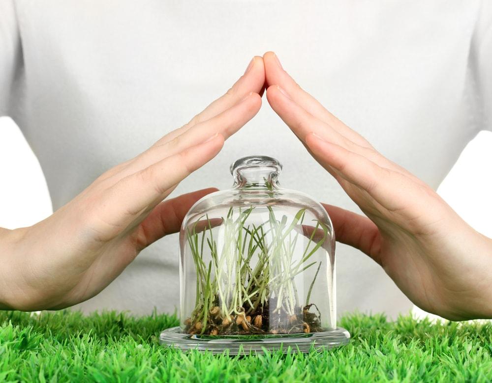 Мировое производство средств защиты растений