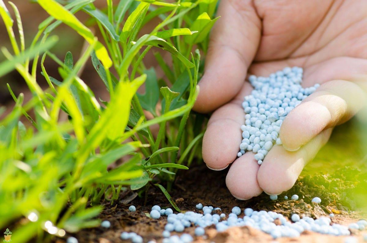 Удобрение хлористый калий