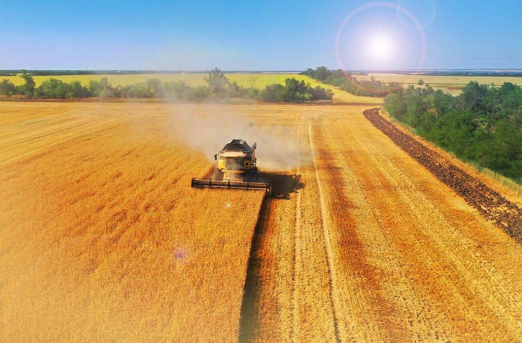 «Уралхим» испытал удобрения на юге России
