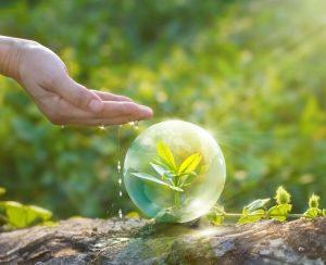Рейтинг средств защиты растений (СЗР)