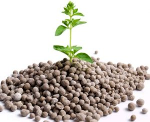 Азотно-фосфорно-калийное удобрение: применение, назначение