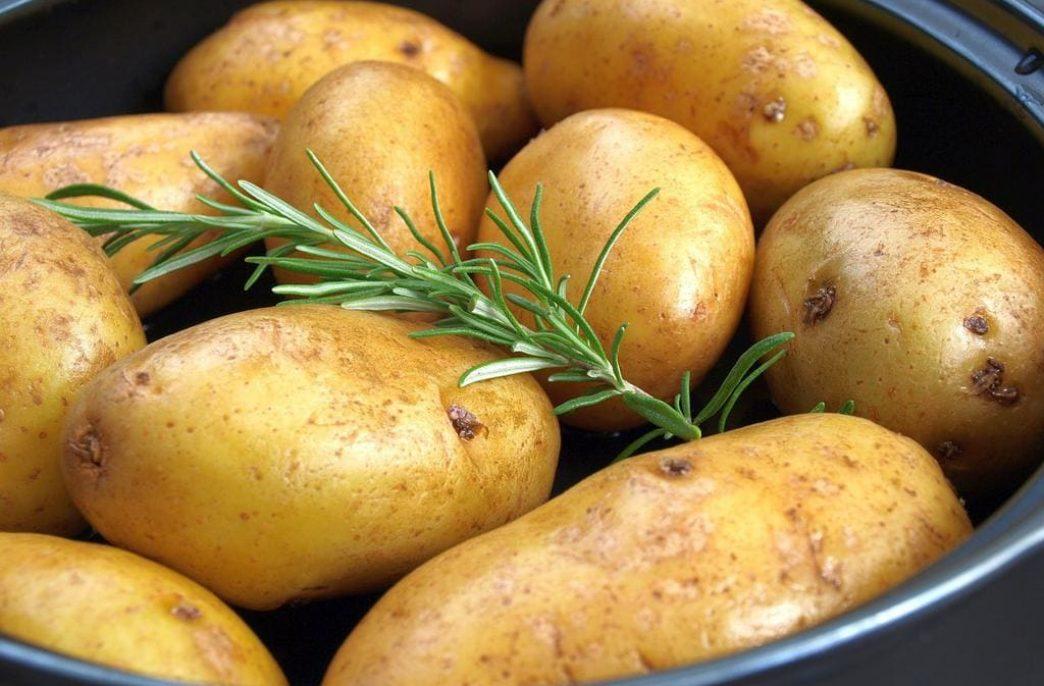 В России ожидаются хорошие урожаи картофеля и подсолнечника