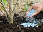 Рейтинг фосфорно-калийных удобрений