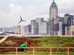 Сингапур развивает городские фермы