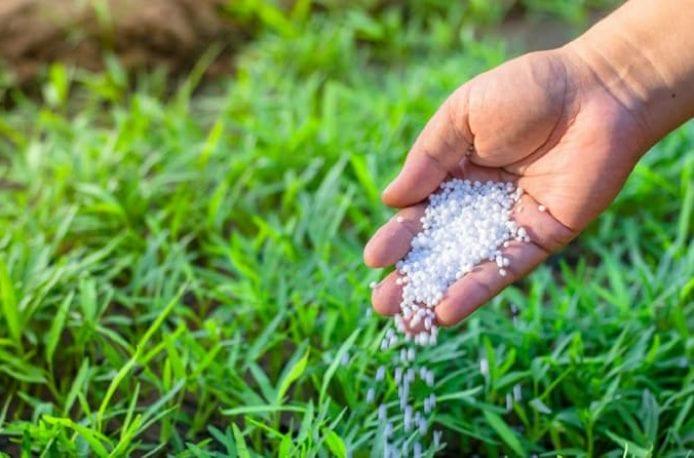 Сульфат калия: применение на огороде и в саду