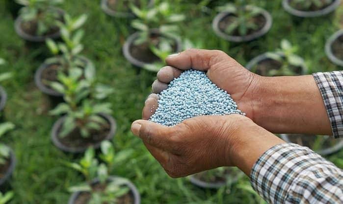 Нормы внесения минеральных удобрений