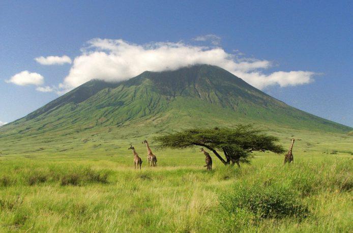 Танзания столкнулась с подорожанием удобрений