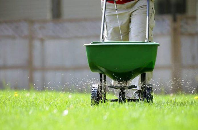 Как подобрать и применять удобрение для красивого газона