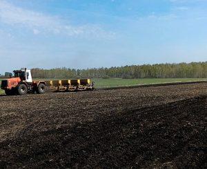 В Челябинской области ухудшилось плодородие земель